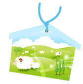 Ema sheep greeting cards — Vector de stock
