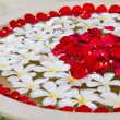 Plumeria and Rose Petals - ストック写真
