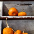Pumpkins on worn shelves — Stock Photo