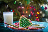 Milk and Christmas Cookies — Stock Photo