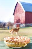Hausgemachter apfelkuchen auf einem hölzernen picknick-tisch — Stockfoto