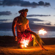 Постер, плакат: Male Fire Dancer in Hawaii