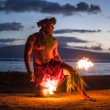 Male Fire Dancer in Hawaii - Stock Photo