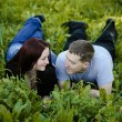 Couple in Love in the meadow - Stock Photo