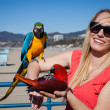 Stock Photo: Pretty cheerful tourist with Macaw Parrots at beach on wi