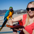 Stock Photo: Beautiful Womwith Macaw Parrots at beach