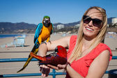 Pretty cheerful tourist with Macaw Parrots at the beach on a wi — Stock Photo