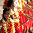 Stock Photo: Young Hula dancer leads the troupe
