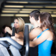 Group of friends exercising at the gym on stair steppers — Stock Photo