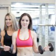 Women training at the Gym — Stock Photo