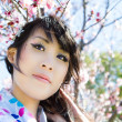 Beautiful Japanese woman under cherry blossoms — Stock Photo