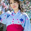 Beautiful Japanese woman under cherry blossoms - Stock Photo