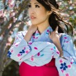 Постер, плакат: Beautiful Asian woman under cherry blossoms
