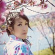 Pretty Japanese woman under cherry blossoms - Stock Photo