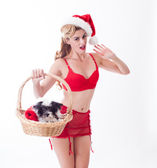Sexy Pin up beautiful Santa delivering a puppy present — Stock Photo