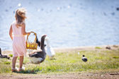 Pretty girl with Ducks and geese — Stock Photo