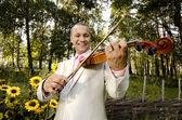 Violinist — Stock Photo
