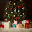 Christmas firtree — Stock Photo #35556719