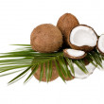 Coconuts — Stock Photo #35558601