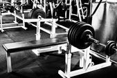 Weight in gym — Stock Photo