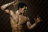 Muscular guy on netting steel fence — Stock Photo