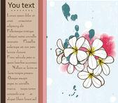 プルメリアとカード. — ストックベクタ