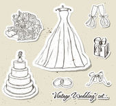 Ročník svatební sada. — Stock vektor
