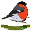 Christmas card with bullfinch. — Stock Vector #35436165