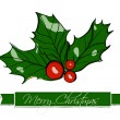 Christmas holly. — Vector de stock #35436371