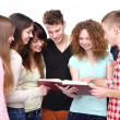 Foto Stock: Group of students talking and holding notebooks