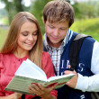 Couple of students with a notebook outdoors — Stock Photo