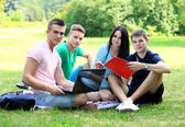 Four smiling student studying in green park — Stock Photo