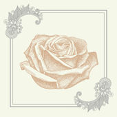 Ornate frame with sketchy drawing of rose flower — Stock Vector