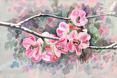 Original painting of flower, watercolor style — Stock Photo