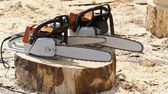 Chain saws for working with wood on a freshly felled tree stump. — Stock Photo
