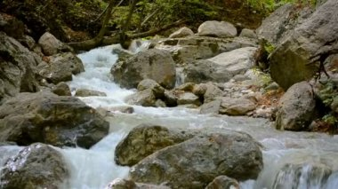 Affluent mountain stream after a rain. — Stock Video