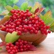 Red berries of viburnum in wooden bowl — Stockfoto