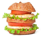 Burger fast food isolated on white background — Stock Photo