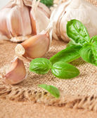 Garlic cloves and garlic heads and pestle - herbs and spices — Stock Photo
