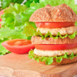 Burger fast food — Stock Photo