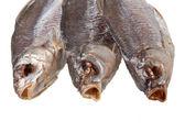 在白色背景上的鱼干 — 图库照片
