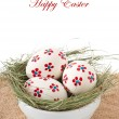 Easter eggs in a bowl decorated with a nest - Foto de Stock