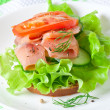 Appetizing sandwich with salmon — Stock Photo