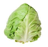 Cabbage isolated on white background — Stock Photo
