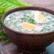 Cold vegetable kefir soup with eggs and greens — 图库照片