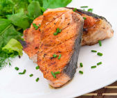 Grilled salmon and salad — Stock Photo