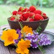 Strawberries on a bowl in the summer garden — Stock Photo
