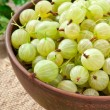 Green gooseberries in a ceramic bowl — Stock Photo
