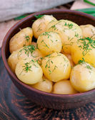 Young boiled potatoes — Stock Photo