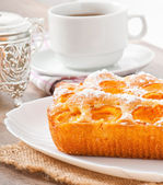 Sponge cake with apricots sprinkled with powdered sugar — Stock Photo